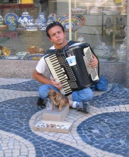 Portuguese busker with over-worked dog